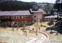 초등학교에 인접한 잔디 광장