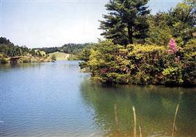 쓰바야마 생활 환경 보전 숲