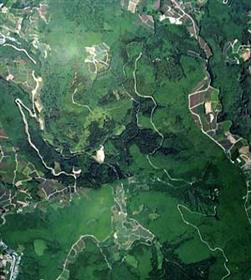 우레시노 생활 환경 보전 숲