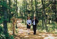 삼림욕의 모습