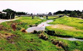 多自然河的建設(田手川)
