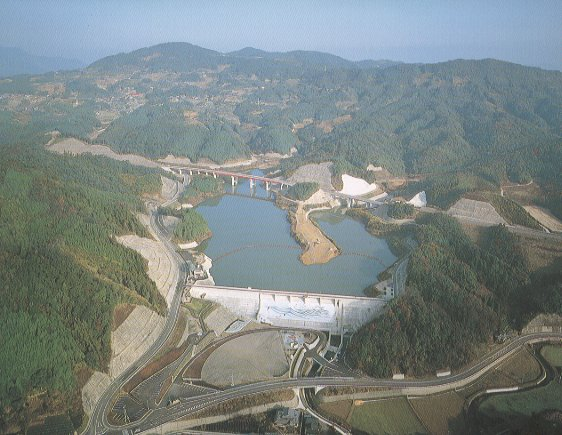 Forked tool dam