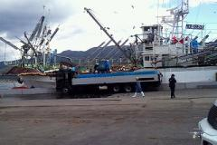 Fishing port restoration