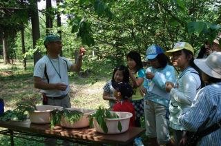 """Forestry Research Laboratory opening event """"expeditionary party of small forest"""""""