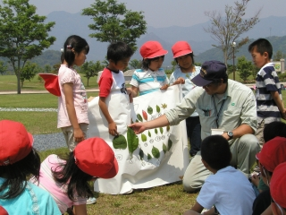Photograph: Tree learning for primary schoolchildren