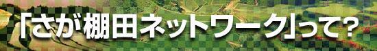"""""""saga棚田网络?""""no页眉图片"""