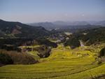 開辦唐津市相知町蕨野地區的擴大圖片的(2.27Mb)