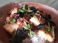 kanshindonkakuzo of tofu