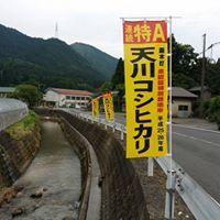 아마카와 고시히카리 쌀 FB