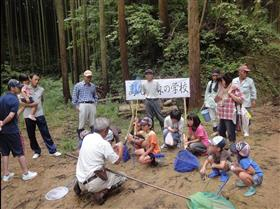 The forest environmental education