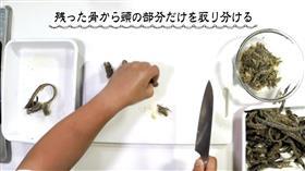 食谱视频warasubo饺子