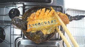 食谱视频大弹涂鱼饺子